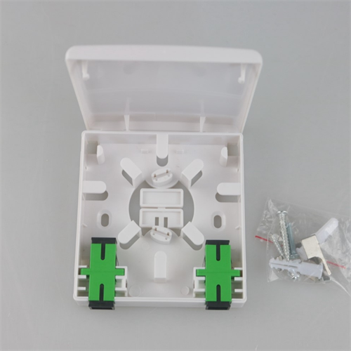 Professional manufacturer mini ODF 2 Core Optical wall mount outlet for FTTH indoor fttx box